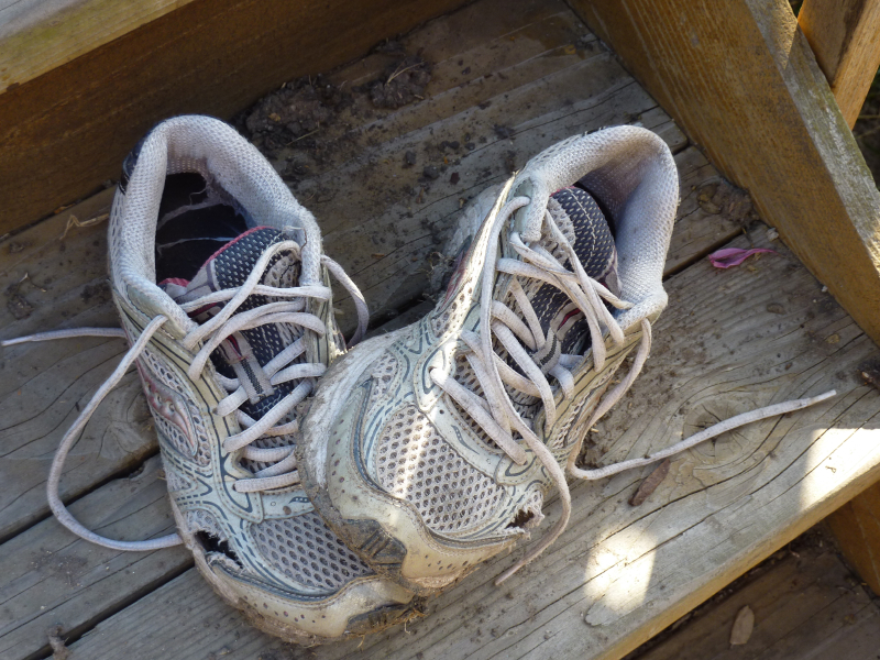 Replace Running Shoes Every Miles
